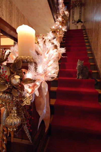 Wooley Christmas