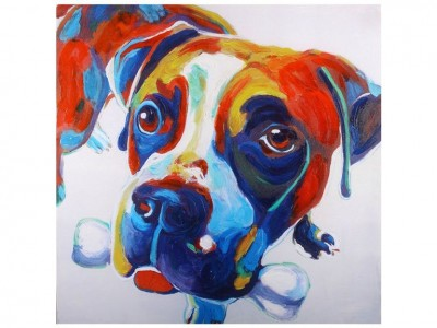 Boxer Colorful Canvas