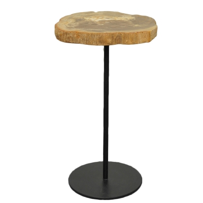 Petrified Side Table on Iron Base